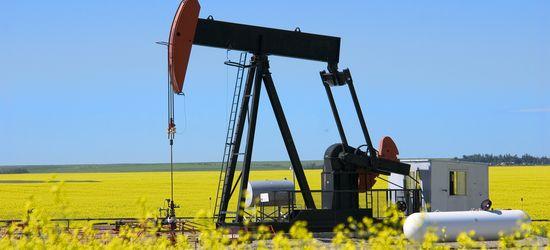 У нефти есть шансы на
