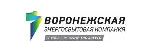 Логотип ТНС Энерго Воронеж