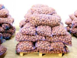 Картофель дорожает