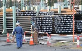 Япония против введения