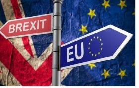 Петиция против Brexit