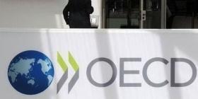 В ОЭСР отметили
