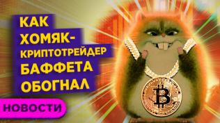 Хомяк-криптотрейдер